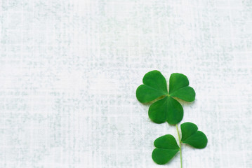 A happy life will be filled with love in the heart like a shamrock leaf and petal-like heart, it might be very happy.