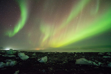 aurora borealis over black sand  beach and ice cubes, iceland.