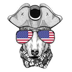 DOG for t-shirt design wearing pirate hat Cocked hat, tricorn Sailor, seaman, mariner, or seafarer
