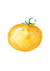 Watercolor pattern - a yellow tomato on a white isolated background. Use for your design, logo, cards, websites and other things.