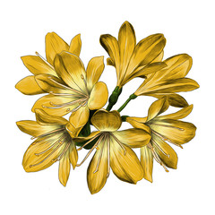 Lily bouquet 7 flowers yellow sketch vector graphics color picture
