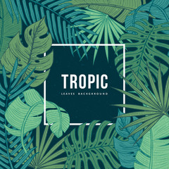 Modern floral background with frame for your text. Tropic leaves composition. Eps10 vector.