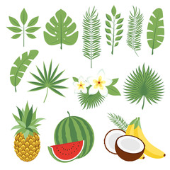 Set of cute tropical leaves and fruits, palm leaves and flowers. Pineapple, watermelon, bananas, coconut. Collection of scrapbooking elements for beach party. Objects for decoration