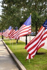 American flags line the streets around the Citadel in Charleston SC