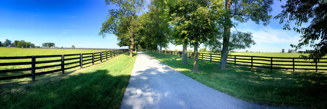 """Horse farms just outside Lexington KY, Known as the  """"Horse Capital of the World""""."""