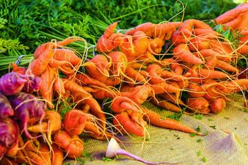 Organic carrots on sale at the farmers market in Punta Gorda, FL