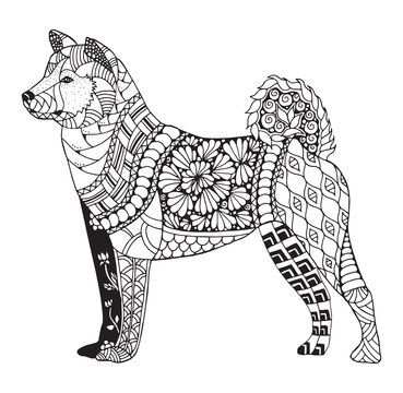 Akita dog zentangle stylized, vector, illustration, freehand pencil, pattern. Zen art. Black and white illustration on white background. Adult anti-stress coloring book.