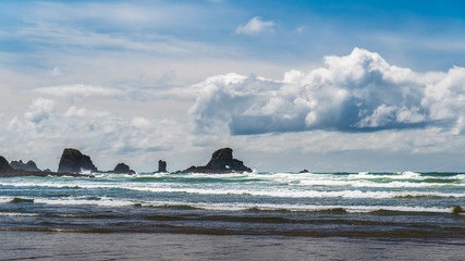 Wall Mural - A cloudy day on the Oregon coast.