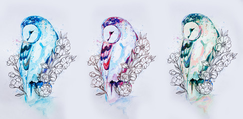 Set of sketches of multi-colored owls on a white background.