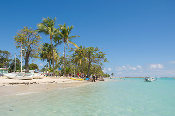 Tropical beach of Sainte Anne - Caribbean Sea - Guadeloupe tropical island