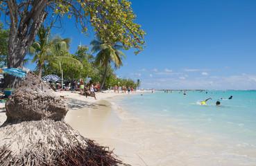 Tropical beach of Sainte Anne - Caribbean Sea - Guadeloupe tropical island Wall mural