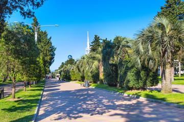 Park with palm trees at promenade of Batumi, Georgia