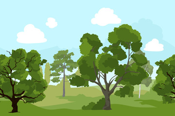 Forest landscape with different green trees and grass. Vector background illustration in cartoon style