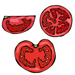 Piece or Slice of Red Fresh Ripe Tomato. Isolated On a White Background. Realistic and Doodle Style Hand Drawn Sketch Vector Illustration.