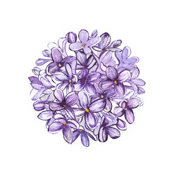 Watercolor flower lilac circle. Tattoo art or t-shirt design isolated on white background.
