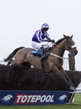 Quite By Chance ridden by Mr Micheal Legg clear the last fence before going on to win the 15.20 rewards-racing.com Amateur Riders' Handicap Steeple Chase