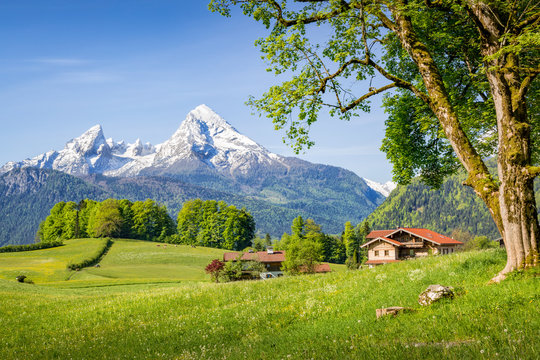 Mountain landscape in the alps in summer with Watzmann, Bavaria, Germany
