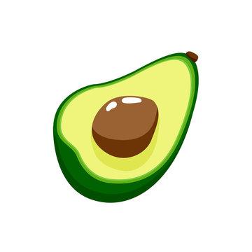 Vector illustration of avocado isolated on white background.