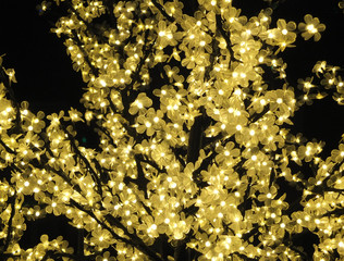 yellow fairy lights wrapped around a tree