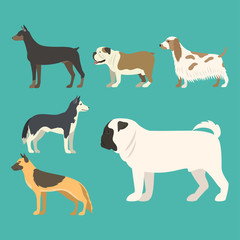 Funny cartoon dog character bread in flat style puppy pet animal doggy vector illustration.