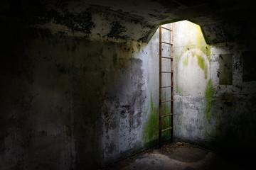 Underground Ladder