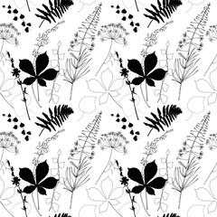 Vector floral seamless pattern  with  fireweed, chicory, dill flowers and fern, ivy and chestnut tree leaves.