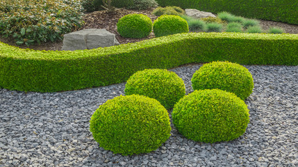 Kleiner Ziergarten mit kugelförmig geschnittenen Büschen Felsen und Hecke - Small ornamental garden with spherical shaped globular bushes and hedges