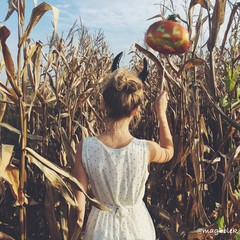 Woman With Halloween Balloon In Field