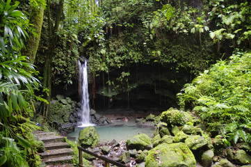The Emerald Pool. Central Forest Reserve. Dominca island, Lesser Antilles