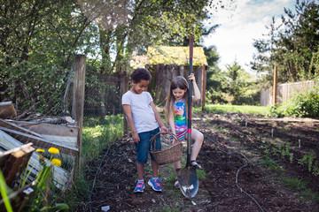 Siblings gardening together in vegetable plot