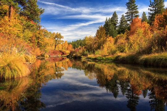 Susan River 10-28-12