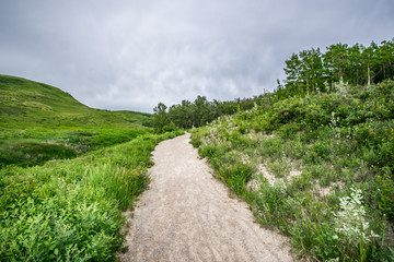 Glenbow Ranch Provincial Park, Calgary, Alberta, Canada