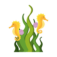 cute seahorse isolated icon vector illustration design