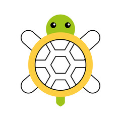 cute turtle isolated icon vector illustration design