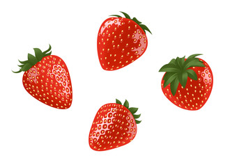 Strawberry Illustration On a white background is a set of 4 images.