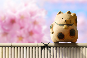 Japan Maneki Neko or beckoning cat, mascot of lucky and money, Present over pink cherry blossom sakura and bamboo fence