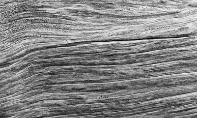 line on old wooden for background