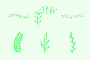 Vector icon of various leaves against green background