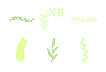 Vector icon of various leaves against white background