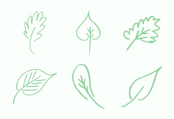 Vector icon of various outline leaves against white background
