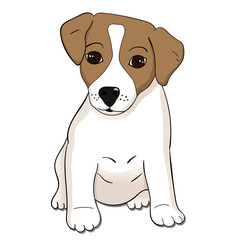 Cute Jack Russel terrier puppy. Vector illustration.