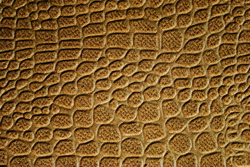 Reptile leather texture