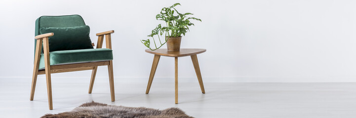 Chair, table, plant and fur