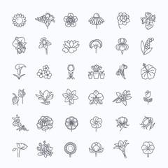 Flower Icon Set - Vector Illustration