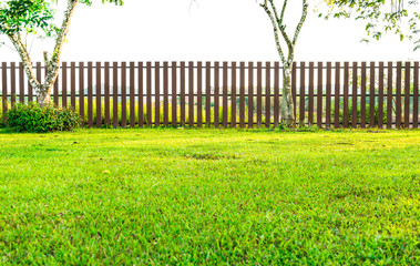 Fence with green grass in garden