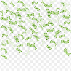 Finance concept. Rain from dollars.