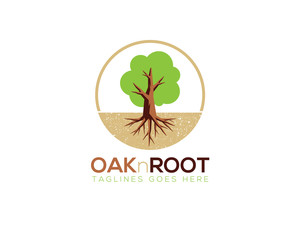 oak and root