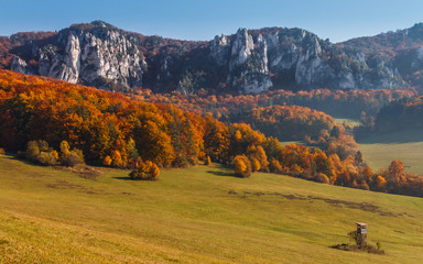 natural scenery of rocks in autumn in Sulov - Slovakia, Europe