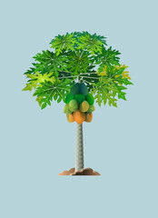 Vector illustration, papaya tree