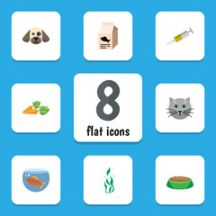 Flat Icon Animal Set Of Vaccine, Puppy, Fish Nutrient And Other Vector Objects. Also Includes Root, Food, Dog Elements.